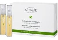 Антицеллюлитная сыворотка для домашнего ухода / Norel Slim-Care – Anti-cellulite ampoules