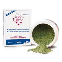Концентрированная морская соль с водорослями для ванн / Salinated Algae GUAM